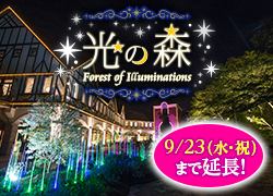 光の森 Forest of Illuminations