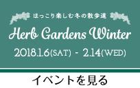 Herb Gardens Winter