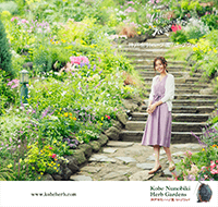 Pamphlet / 総合パンフレット表紙イメージ